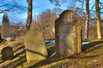 Jewish cemetery von Gina Koch