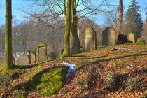 Jüdischer Friedhof von Gina Koch