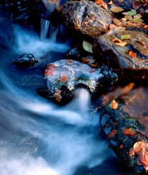 Autumn river with ice covered rocks by Intensivelight Panorama-Edition