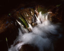 Cascade in a forest creek by Intensivelight Panorama-Edition