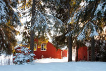 Barn in winter by Intensivelight Panorama-Edition