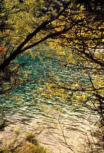 Fenster zum See von Ulrike Ilse Brück