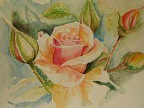 Rose Carlita von Maria Földy