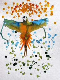 Ara by Condor Artworks