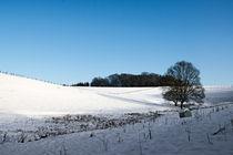 Winter mood #1 by Bernhard Rypalla
