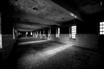 shadows by Thomas Zachariah McCormick