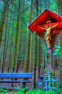 Jesukreuz im Wald von Gina Koch