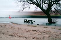 2012-03-11-300dpi-baum-und-baenke-im-wasser-mit-schiff-sea-001