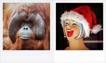 Orangutan-smile-polaroid-puerto-de-mogan-2009
