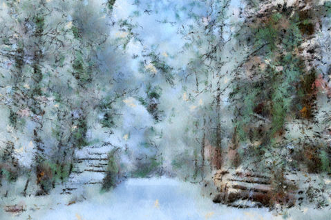 Winter-forest-way
