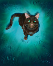 Cat-lookingspeaking-to-moon