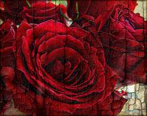 Love Roses von rosanna zavanaiu