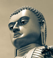 Buddha on top of Golden Temple of Dambulla by Inez Wijker