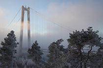 Suspension bridge in winter by Intensivelight Panorama-Edition