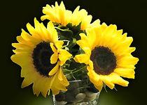 Yellow Flowers von Milena Ilieva