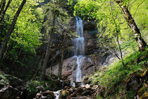 Waterfall in spring forest von Intensivelight Panorama-Edition