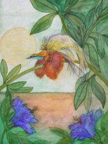 Paradiesvogel und Hibiskusblüten (bird of paradise and hibiscus flower) von Dagmar Laimgruber