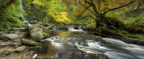 Mallyan Spout and West Beck by Martin Williams