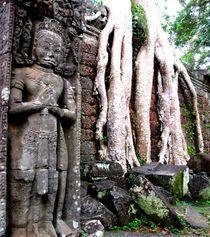 Cambodia032