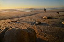 beach walk von dayle ann  clavin