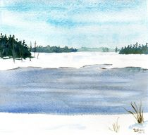 Winter Pond by Sandy McDermott