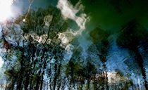 Reflektion Blau von k-h.foerster _______                            port fO= lio