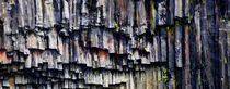 Basalte am Svartivoss by k-h.foerster _______                            port fO= lio