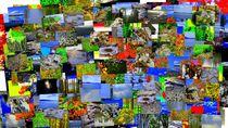 Mental-landscape