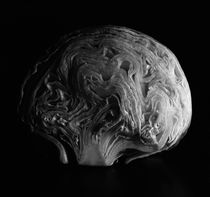 Brain Salad by Nigel  Bangert