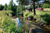Summer creek by Intensivelight Panorama-Edition