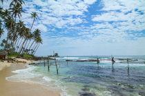 Stangenfischer  in Kogalla auf Sri Lanka von Gina Koch