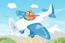 geheimagent Boo und das Flugzeug by Michaela Heimlich