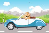 Hund-boo-und-auto2