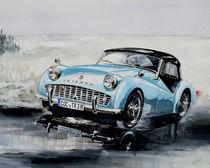 Powder blue von Arthur Williams