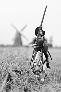 Don Quixote in Bierde by Harald Walker