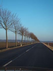 Landstraße von Ka Wegner