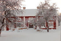Red farm-house in the snow by Intensivelight Panorama-Edition