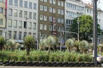 Palmen in der City von Marina von Ketteler