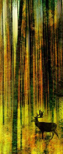 Hirsch by Matthias Rehme