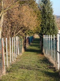 Gartenweg von Ka Wegner