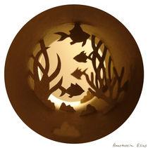 Aquarium by Anastassia Elias