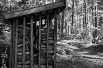 Wood stacked in a shed - monochrome by Intensivelight Panorama-Edition