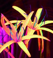 Fantasy Flowers 7 by Margaret Saheed