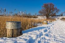 Winter by Rico Ködder