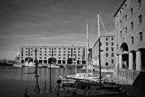 Albert Dock and Liver Buildings  by illu