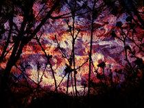 Alien Sunset by Robert Ball