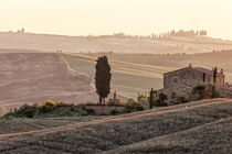 Tuscan Fall by Henrik Spranz