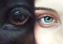 Miss & Horse von Kate Toluzakova