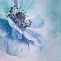 'shades of blue' by Priska  Wettstein