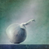 onion by Priska  Wettstein